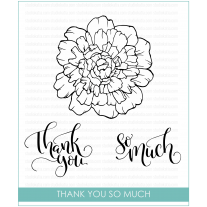 Studio Katia - Thank You So Much - Clear Stamps 4x6