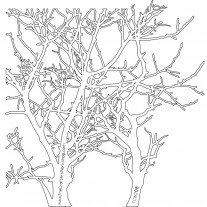 The Crafters Workshop - Schablone 6x6 - Branches
