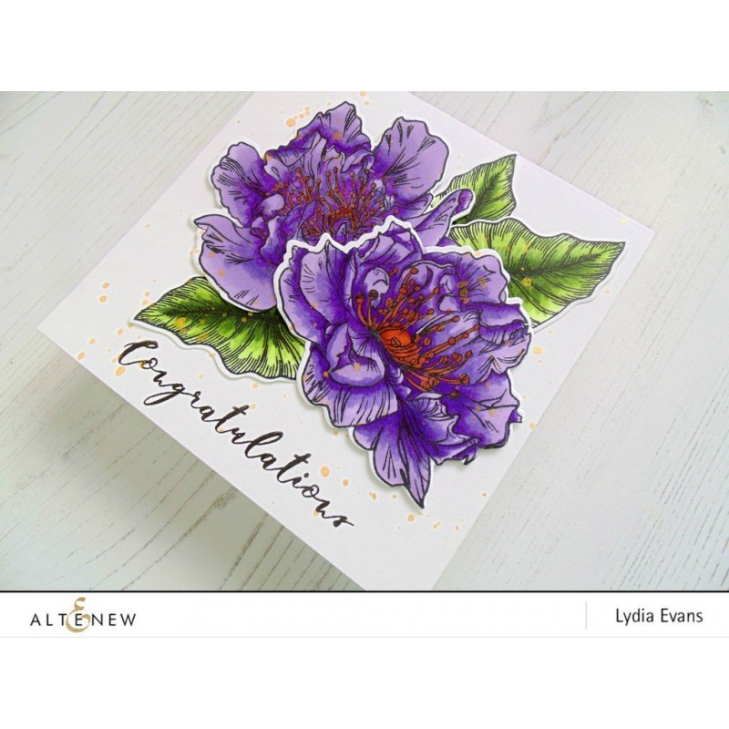 Altenew - Engagement Wishes - Clear Stamp 6x8