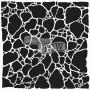 The Crafters Workshop - Schablone 6x6 - Organic Matter